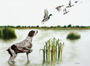 jeanne de chantal nyckees aquarelliste animalier belge peinture trop tard